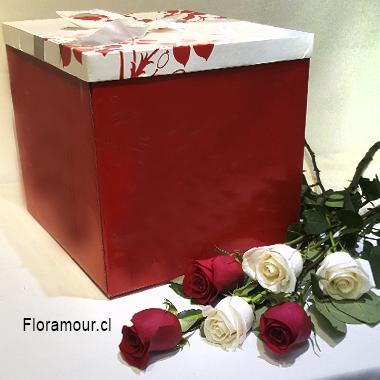 Caja de rosas con 15 rosas ecuatorianas seleccionas